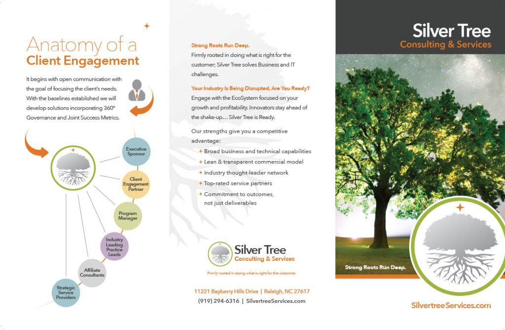 Silver Tree Consulting Brochure
